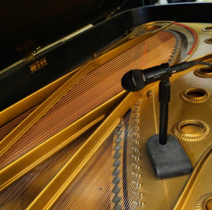 The insides of a Baldwin grand piano I recorded on in the last summer. A true piece of art.