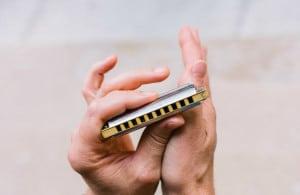 harmonica rookies2
