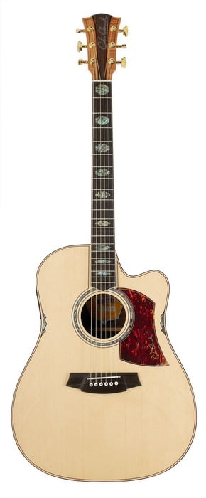 beautiful acoustic guitar fl3ac