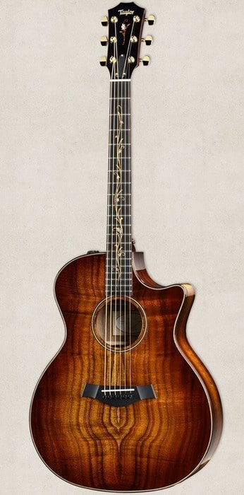 Voting On The 16 Most Beautiful Acoustic Guitars Of 2018
