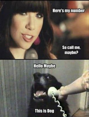 funny music memes call me maybe2