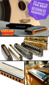 best begginers harmonica